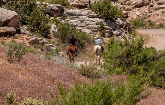 Horse riding in the Rockies