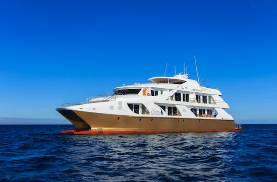 Elite Luxury Yacht   Luxury Yachts and Cruises in the Galapagos