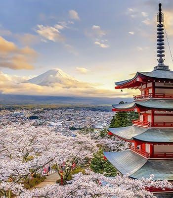 Where to go on vacation in April: Japan