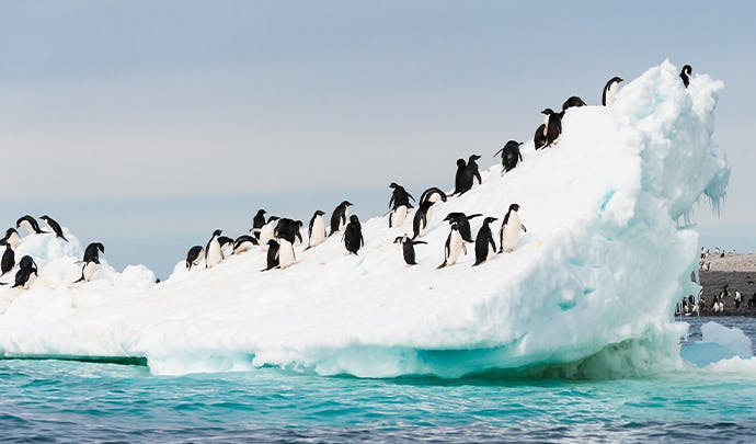 Where to go in December: a luxury Antarctica expedition
