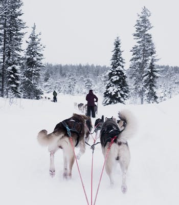 Luxury holiday to Finland in December