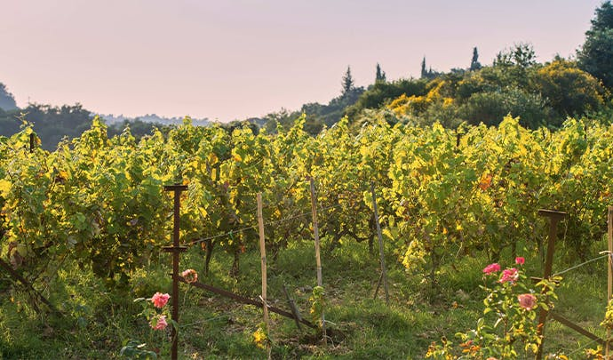 Where to go in September: luxury France holiday