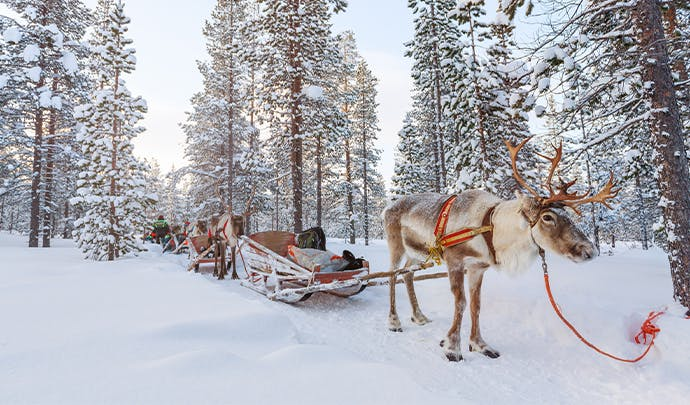 Where to go on holiday in February: Finland