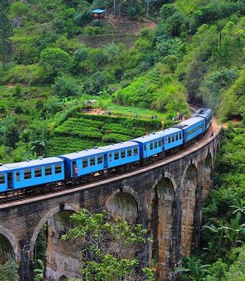 Luxury holiday to Sri Lanka in November