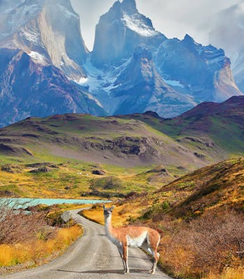 Where to go on holiday in January: Chile