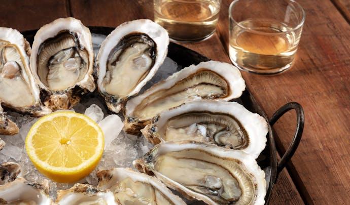 Oyster shucking in Croatia