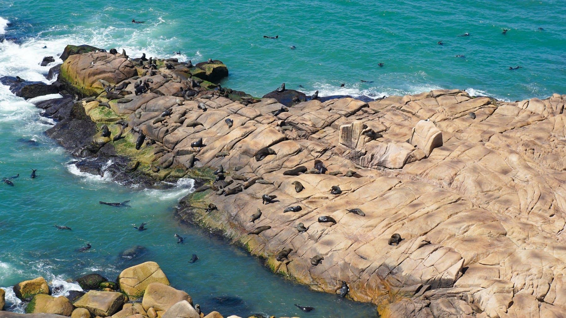 Cabo Polonio in Uruguay