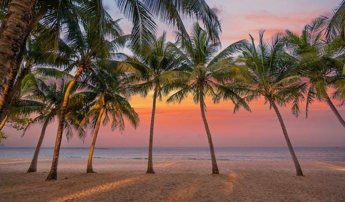 Antigua -Green Island